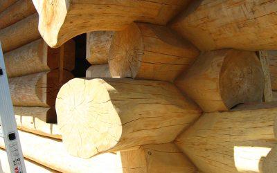 Construction of wooden houses in Ukraine